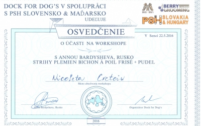 Acreditari premii si distinctii Frizerie Canina